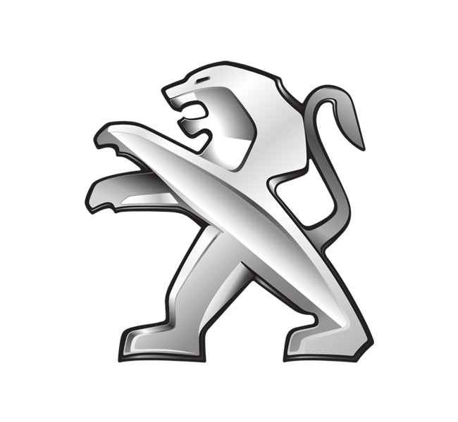 شعار 3008